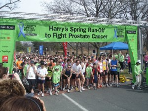 Harry's Spring Run Off