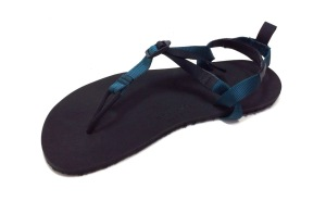 Syncline Straps